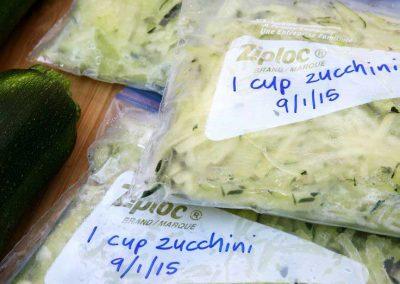 Zucchini-freeze-web