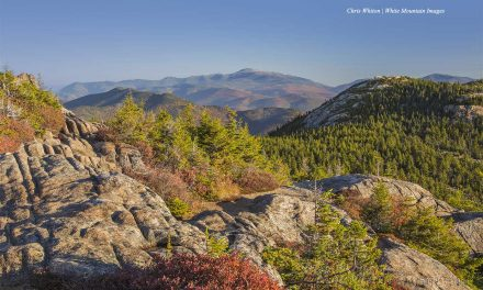 7 Pro MWV Photographers Share Fall Foliage Tips