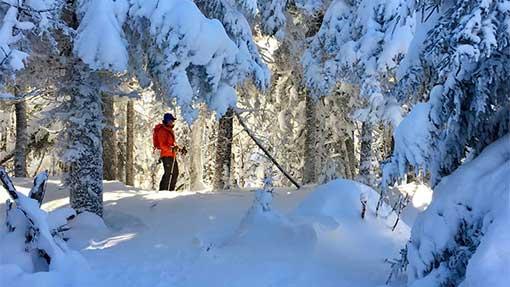 GBA Randolf ski project
